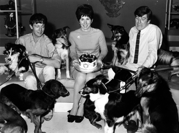 Blue Peter presenters John Noakes, Valerie Singleton and Peter Purves in 1968 (PA Archive)