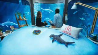 Airbnb Night At the Shark Aquarium