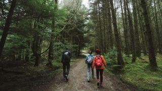 three walkers in Scotland