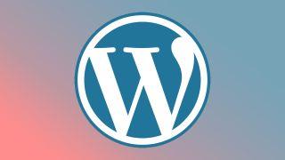 WordPress Portfolio Themes - The WordPress Logo on a gradient background.