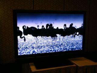 Toshiba Cell Regza HDTV