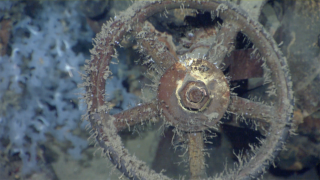 Musashi valve wheel, battleship shipwreck