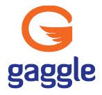 Product: Gaggle Apps
