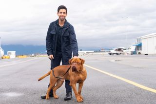 Josh Peck as Scott Jr and dog Hooch in the follow up to the 1989 Tom Hanks film.