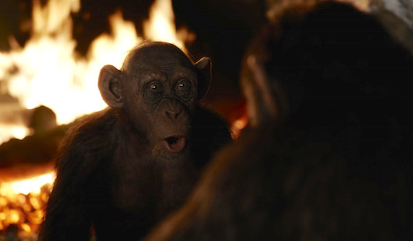 War for the Planet of the Apes Bad Ape