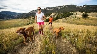 trail running with your dog