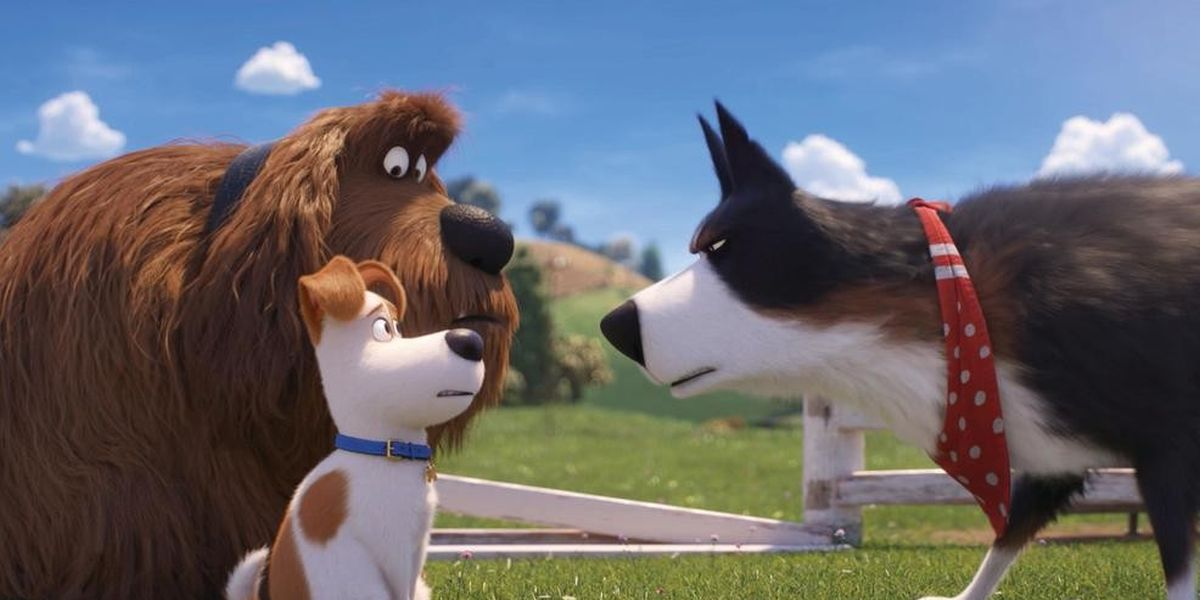 Universal Studios' Secret Life Of Pets Attraction Will Use Facial Recognition To Turn Guests Into Stray Dogs - CINEMABLEND