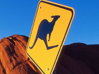 Kangaroo lost its bounce
