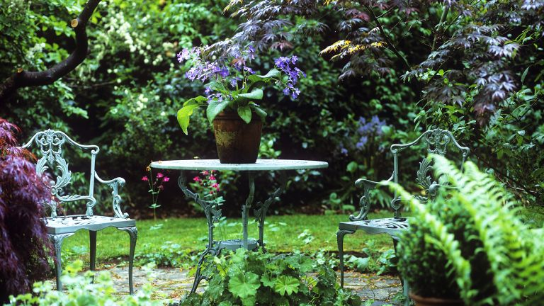 Shade Gardens 10 Planting Ideas And