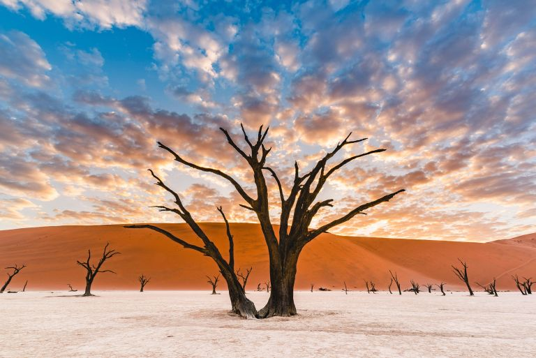 Namibia is one of the best places to avoid Christmas