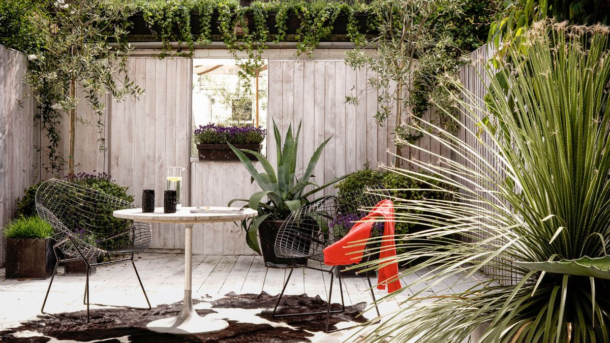 Privacy fence ideas: 12 stylish ways to up the privacy in your garden