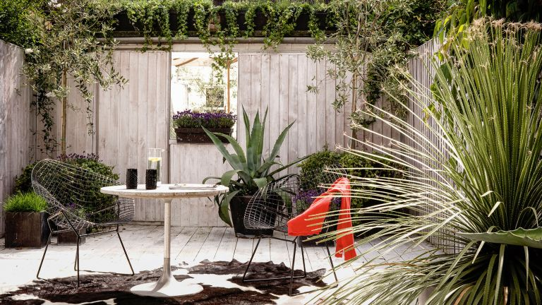 Small garden with grey fence for privacy