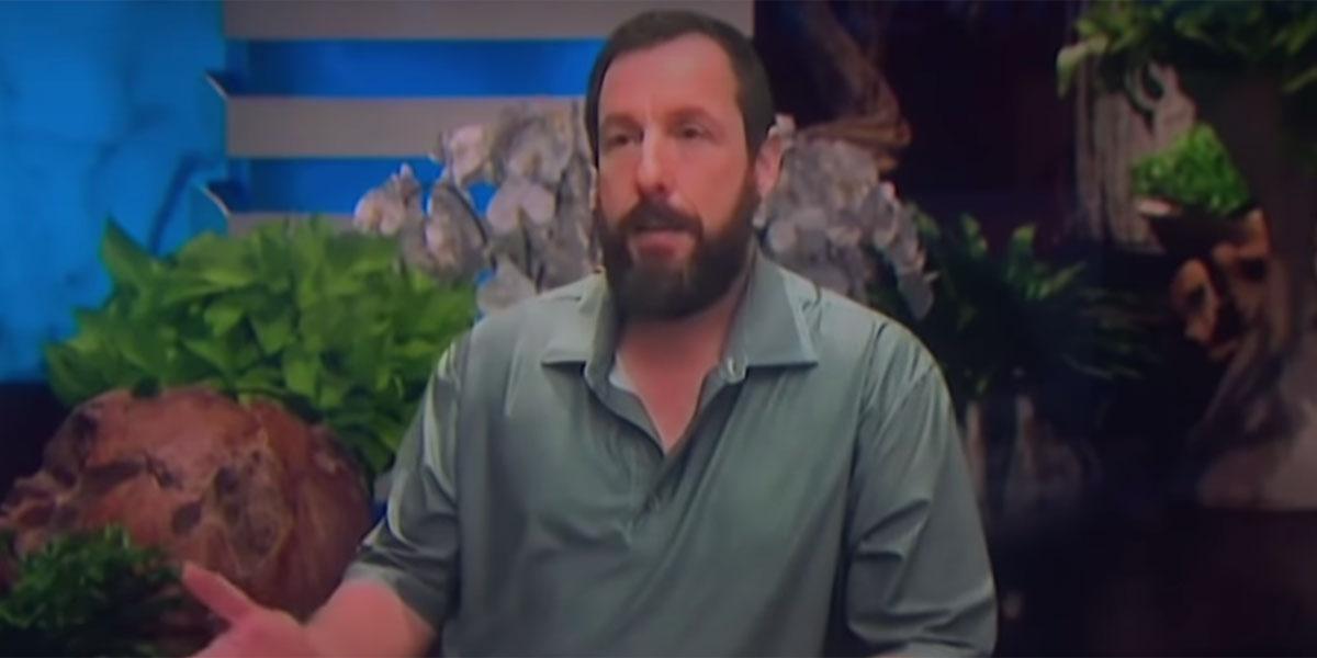 Adam Sandler Beard During Ellen Interview