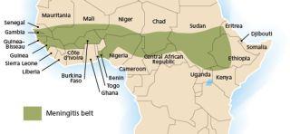 meningitis belt, outbreaks, climate, disease