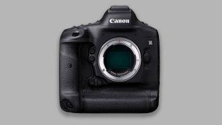 Canon EOS R1 to have Quad Pixel AF and global shutter sensor?