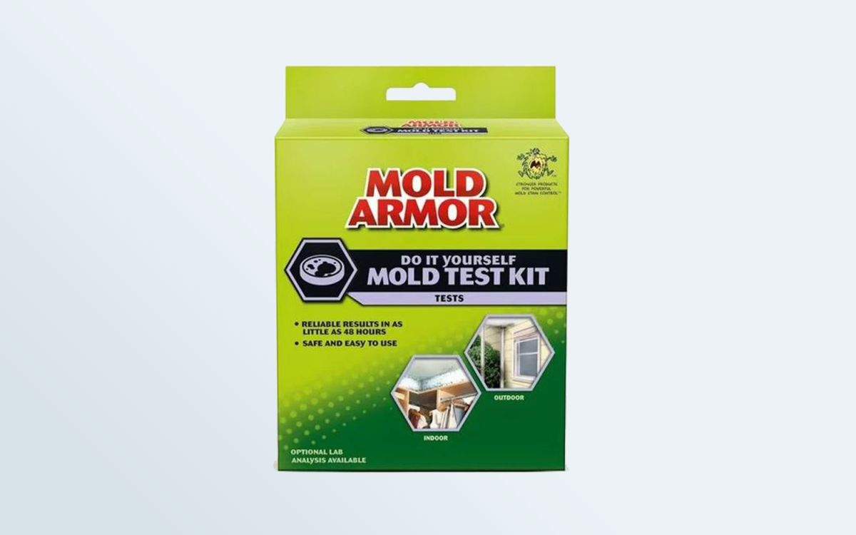 Best Mold Test Kits of 2019 - Detect Mold, Yeast and Fungus