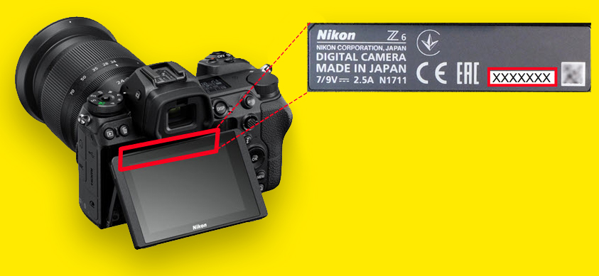 Technical issues with Nikon Z6 and Z7 stabilization – Nikon offers free repairs | Digital Camera World