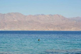 red-sea-color-100327-02