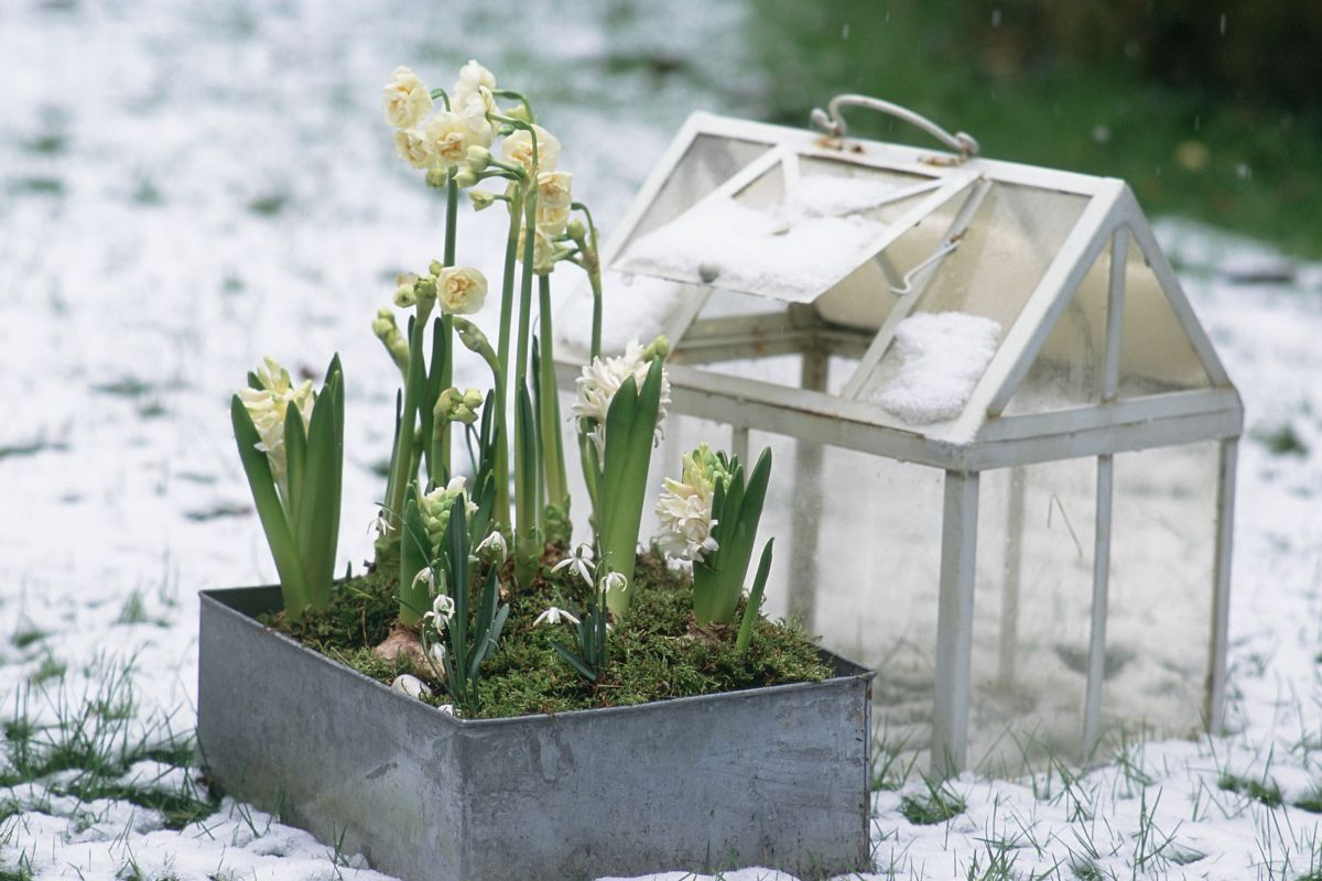 Gardening, Landscaping & Other Outdoor Tips - cover