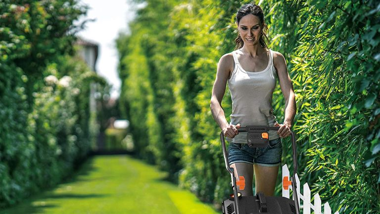best electric lawn mower: Worx