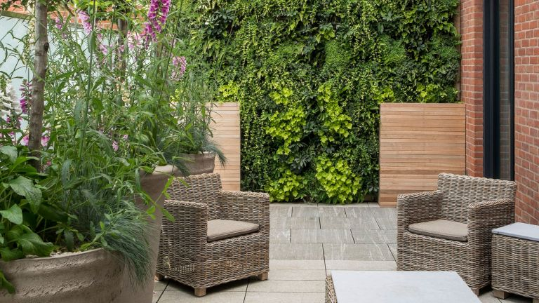 An example of living wall ideas showing rattan garden furniture in front of a green living wall