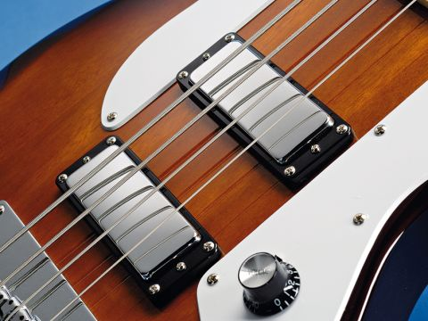 They look like mini-humbuckers, but the pickups are in fact single coils