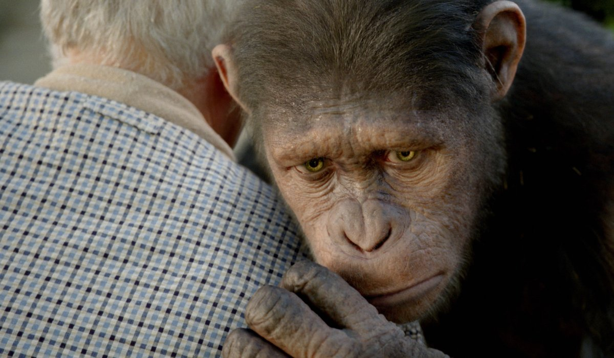 Rise of the Planet of the Apes Caesar shares a somber embrace