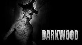 Why Darkwood's Devs Released The Game On Pirate Bay