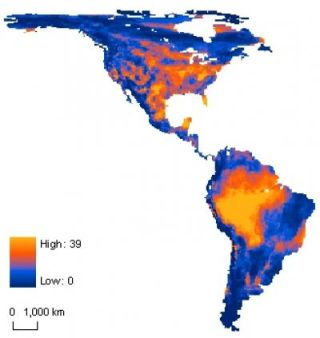 The percentage of mammal species unable to keep pace with climate change in the Americas range from zero and low (blue) to a high of nearly 40 percent (light orange).