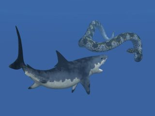 Megalodon Fighting Titanoboa