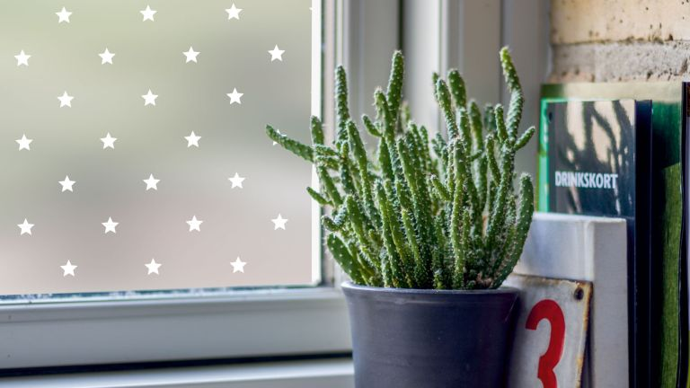 Amazing Decorative Window Film Ideas star window film from purlfrost