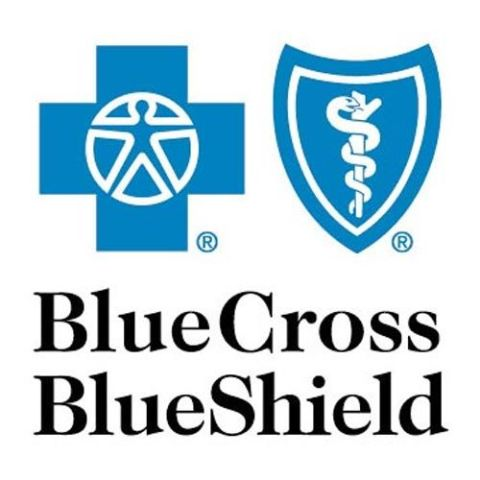 Blue Cross Blue Shield Health Insurance Review - Pros and Cons | Top