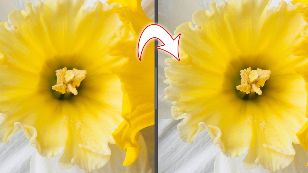 Lightroom tutorial #2: How to make shots look sharper with Lightroom