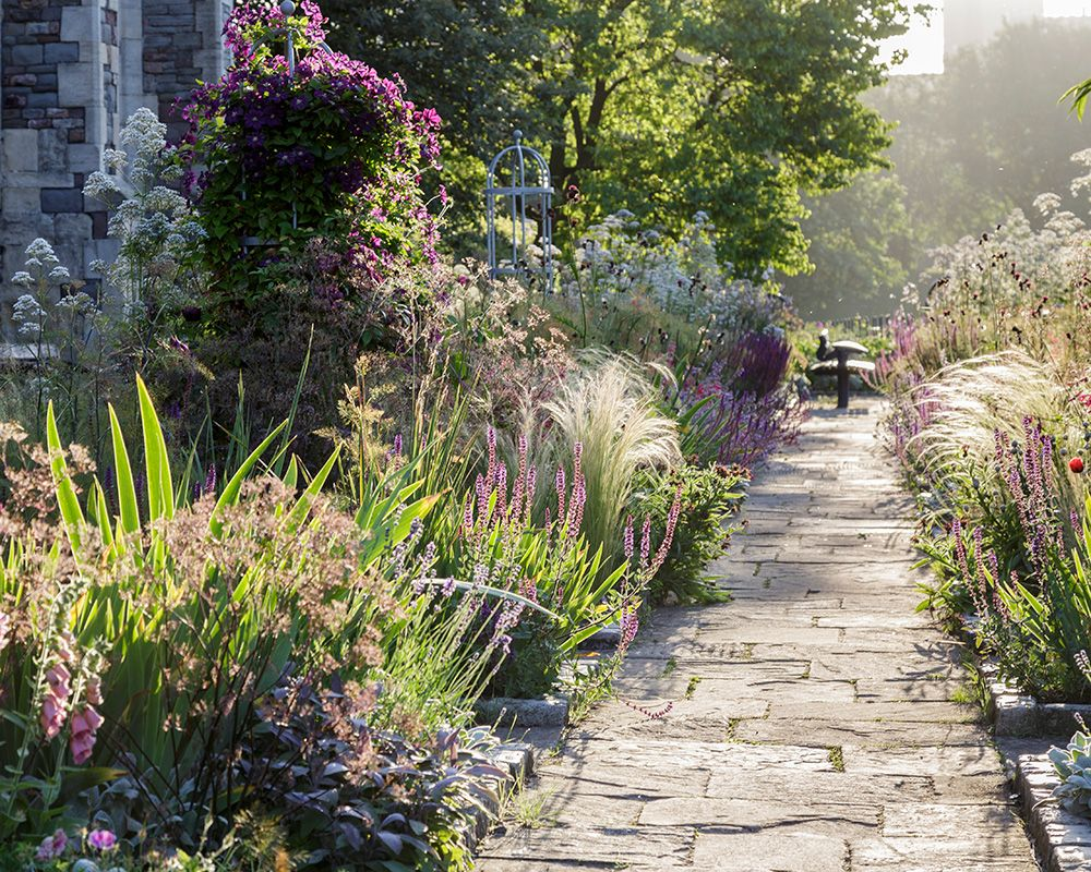 How to plant a fragrant garden – five plants for year-long aromatic pleasure