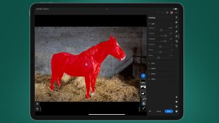 A screenshot of Adobe Lightroom's masking tools being used on a photo of a horse