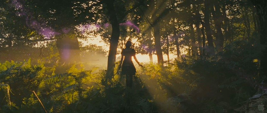 35 High-Res Screenshots From The Snow White And The Huntsman Trailer #5215
