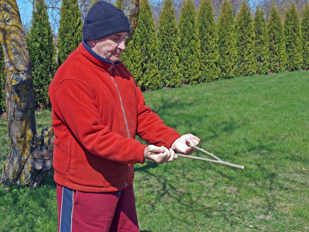 Dowsing: The Pseudoscience of Water Witching   Live Science