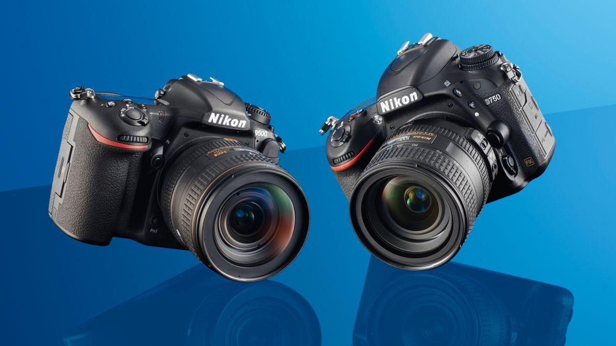 Nikon D500 vs Nikon D750: Which DSLR should you choose?