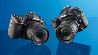Nikon D500 vs Nikon D750: Which DSLR should you choose