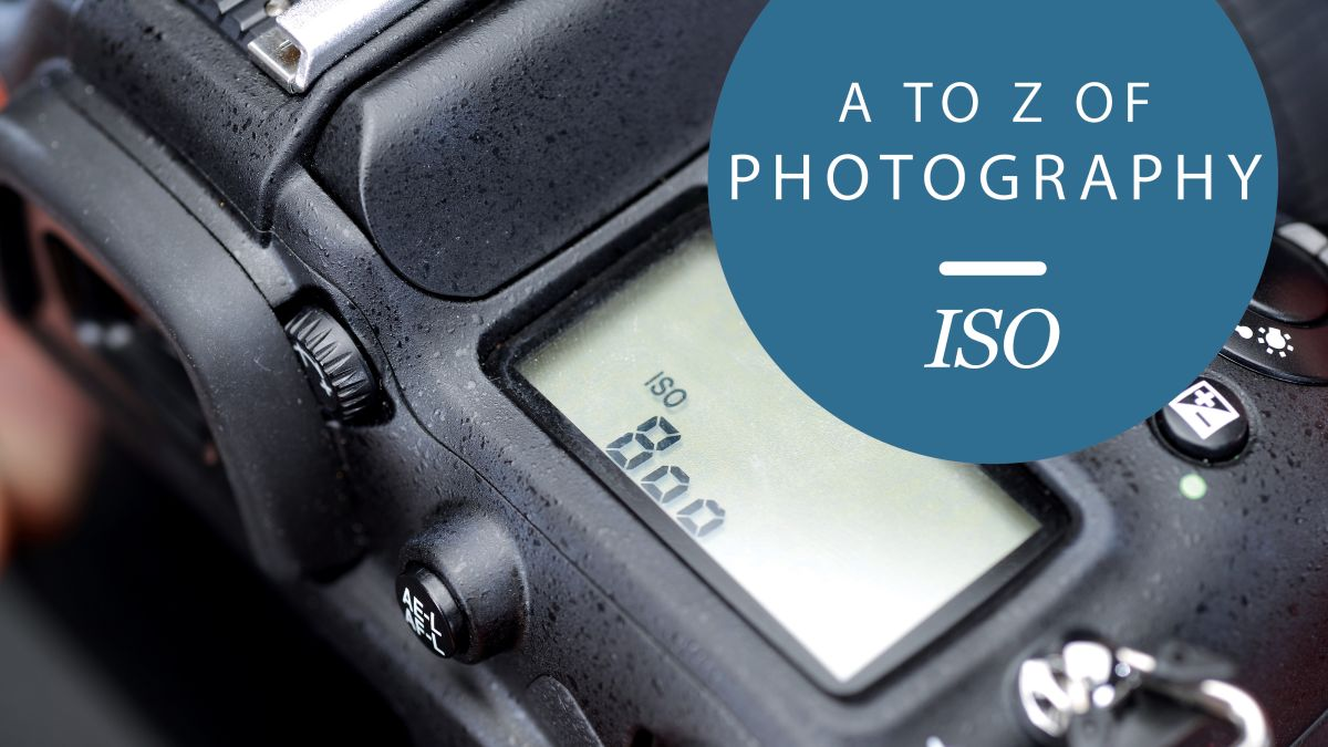 The A to Z of Photography: ISO