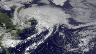 hurricane maria hits newfoundland