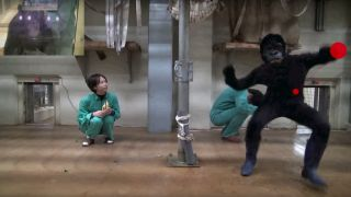 These researchers filmed themselves dressing as apes and terrorising humans, for science