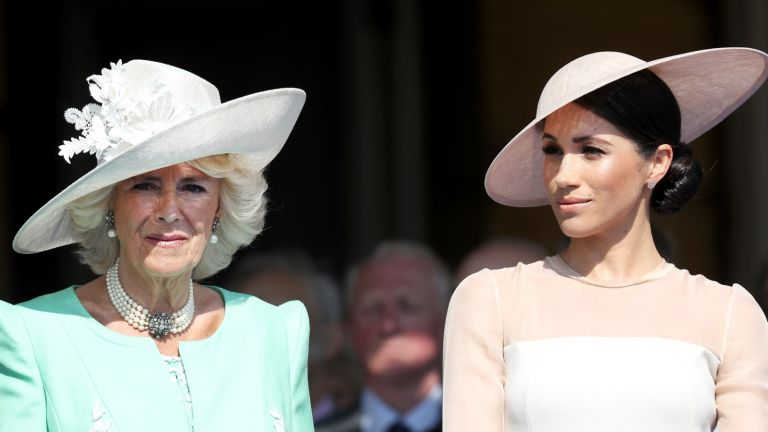 Duchess Camilla has shown 'affection' to Meghan in the past, say royal experts