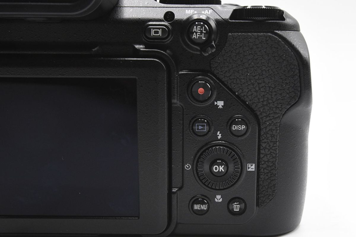 Nikon Coolpix P1000 Review: This 125x Superzoom Shoots the Moon