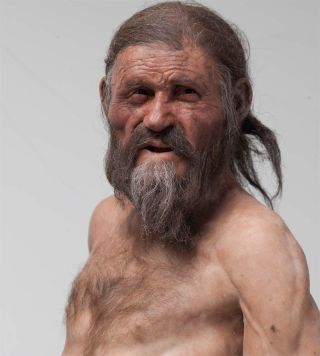 otzi the iceman's facial reconstruction