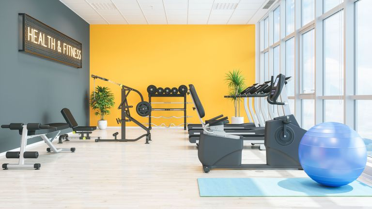 A complete home gym, featuring weights, exercise machines and a Swiss ball