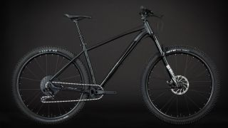 Line29 is an honest aluminium bit of trail riding kit