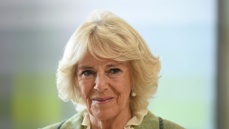 BATH, ENGLAND - OCTOBER 22: Camilla, Duchess of Cornwall opens Royal National Hospital for Rheumatic Diseases (RNHRD) and Brownsword Therapies Centre on October 22, 2019 in Bath, England.(Photo by Finnbarr Webster - WPA Pool / Getty Images)