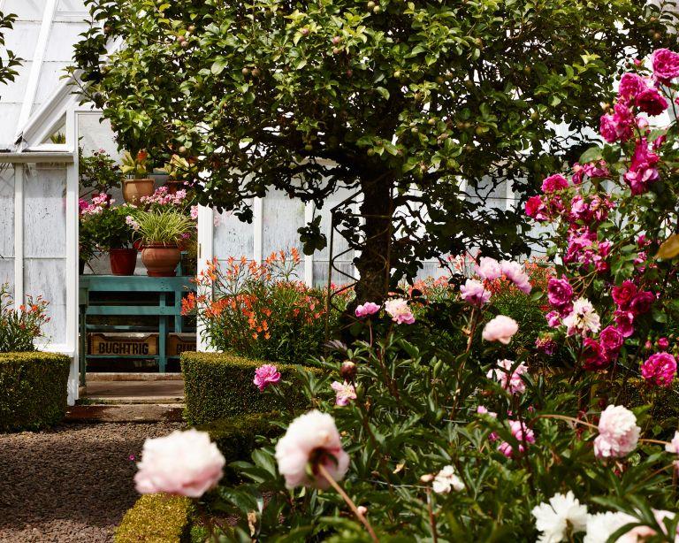Cottagecore garden trend