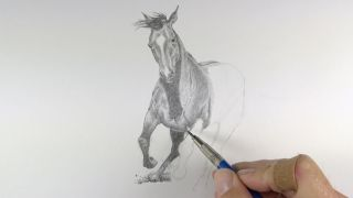 how to draw a horse - Someone drawing a horse.